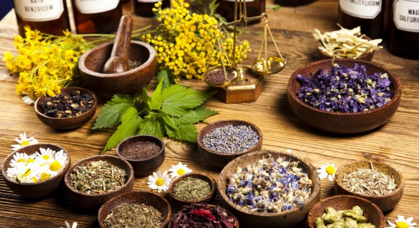 AdobeStock 69582984 1080x675 848x461 - Why is Traditional Medicine Popular?